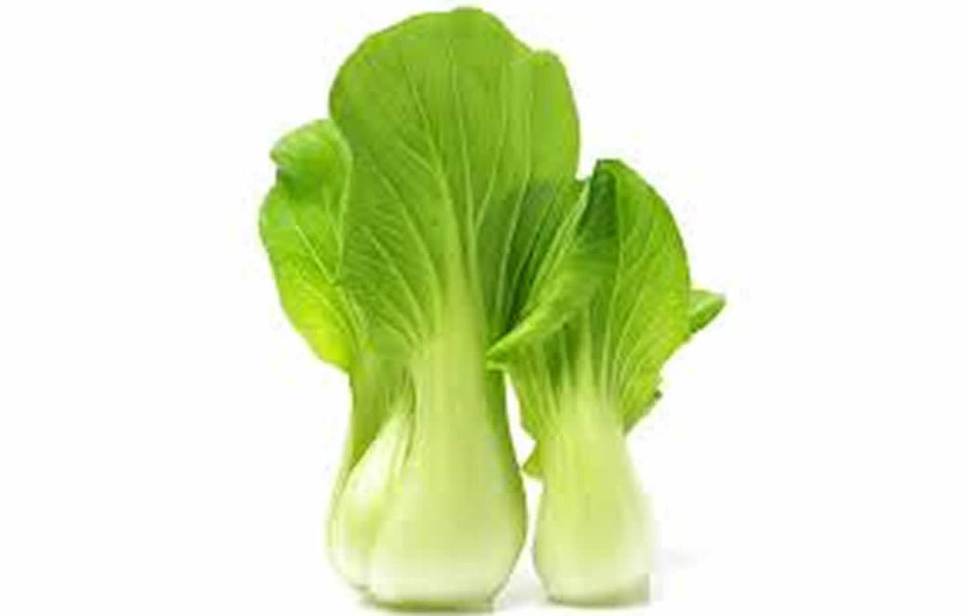 Bok Choy (Hydroponically Grown)