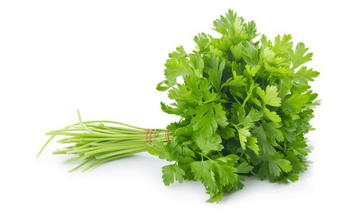 Coriander (Hydroponically Grown)