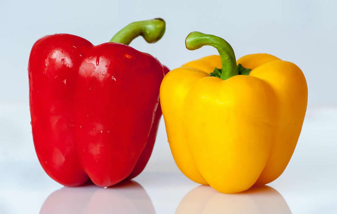 Red & Yellow Bell Pepper(Hydroponically Grown)