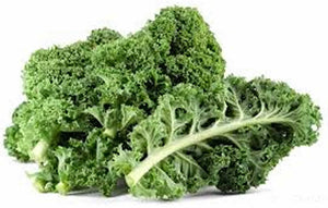 Kale(Hydroponically Grown)