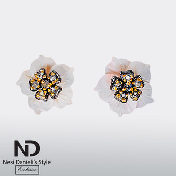 NDS - R2020208