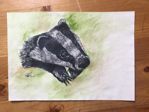 Original of Badger 2018