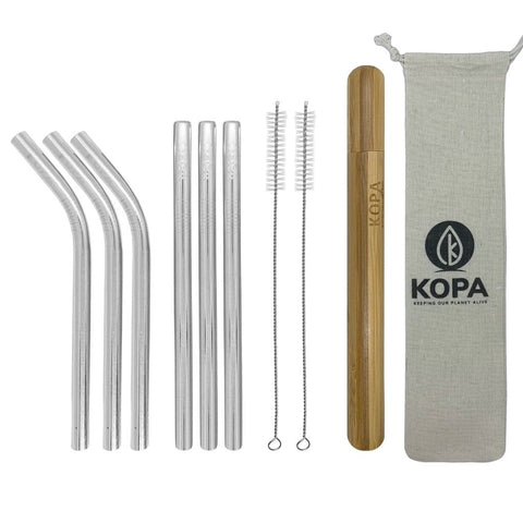 10pc Smoothie Stainless Steel Straw Set - Reusable Straws