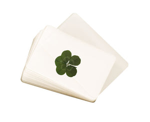 Laminated Real Genuine Five Leaf Clover