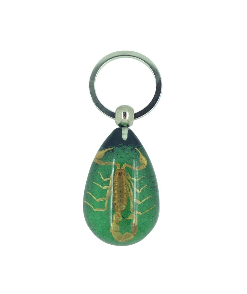 Real Scorpion Green Keyring Keychain