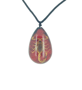 Real Scorpion Red Pendant Necklace