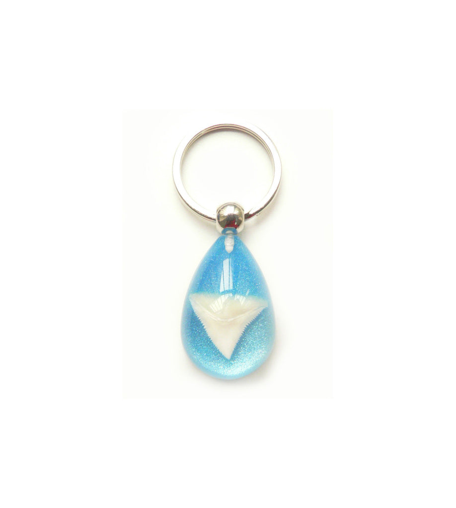 Lucky Real Sharks Tooth Blue Keyring Keychain