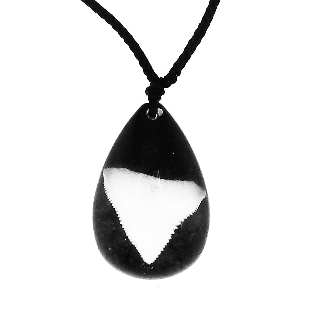 Lucky Real Sharks Tooth Black Pendant Necklace