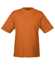 Load image into Gallery viewer, Team 365 Zone Performance T-Shirt -  Men's