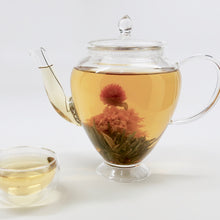 Load image into Gallery viewer, Glass Teapot Bella with Spoutspring Filter 600 ml
