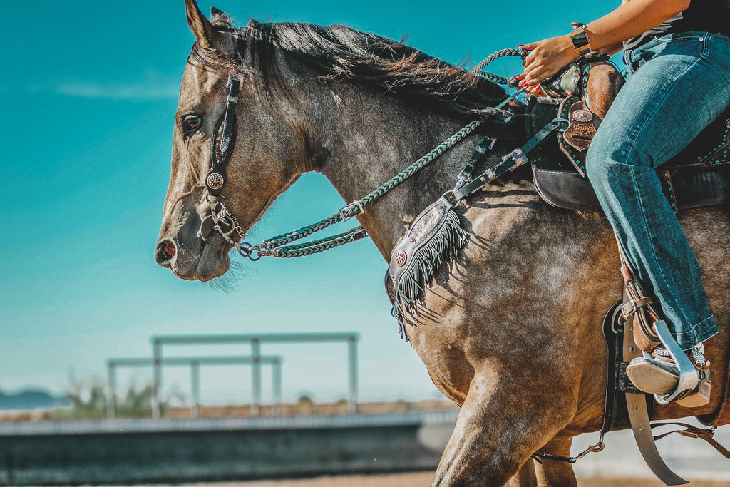 5 Mistakes I've Made Training My Horse