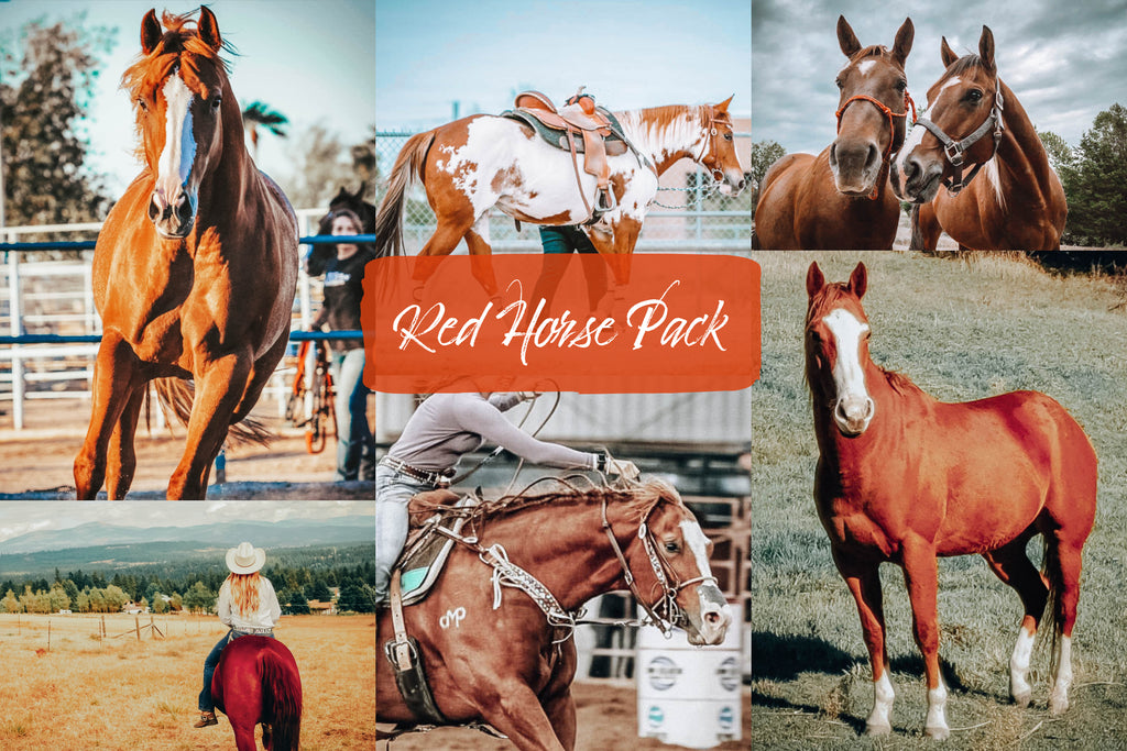 Red Horse Pack