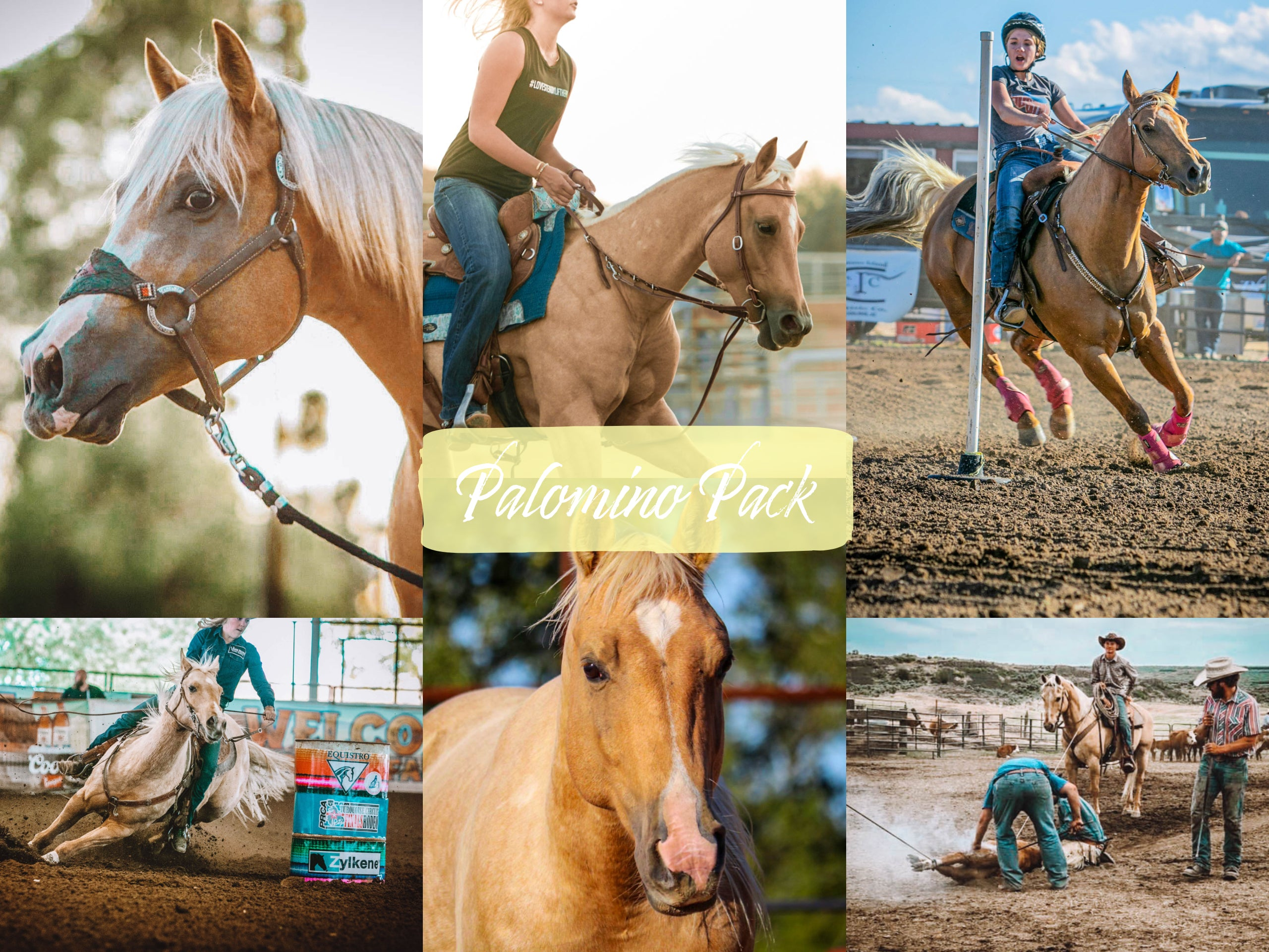 Palomino Horse Pack Modern Cowgirl Presets