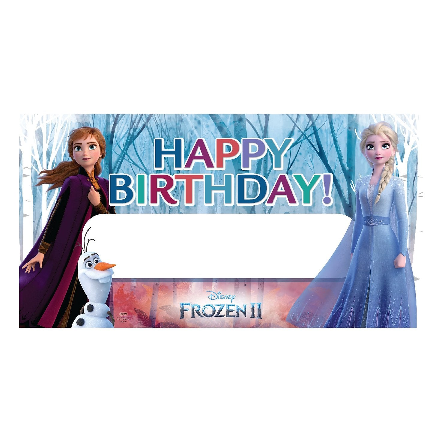 Frozen 2 Party Banner