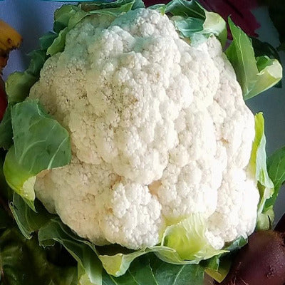 Cauliflower, White - each