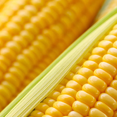 Corn, Ear - each