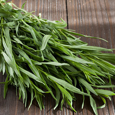 Tarragon, Fresh - 4oz bag