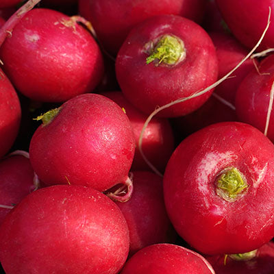 Radishes - LB or bunch