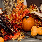 Fall Decor, Autumn Leaves, bunch