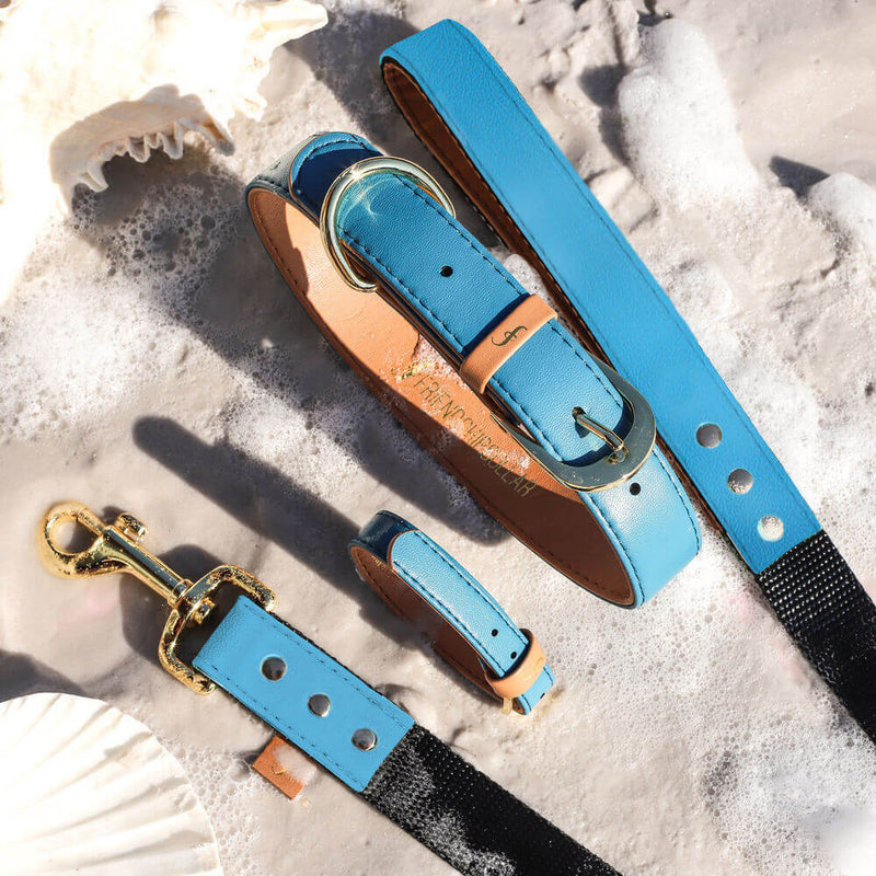 The Classic Pup: Seafoam Blue - Leash