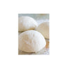 HOLY NAPOLI PIZZA DOUGH 300G
