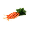 CARROT BUNCH - Delivery Free West Vancouver Area