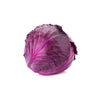 CABBAGE RED - Fresh Produce Delivery Broadway Vancouver