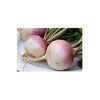 TURNIPS WHITE (5PC)