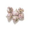 ORGANIC GARLIC (3PC)