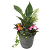 PLANT TROPICAL 10CM ASSORTED