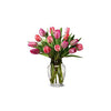 FLOWER - TULIPS ASSORTED COLOURS (5 STEMS)