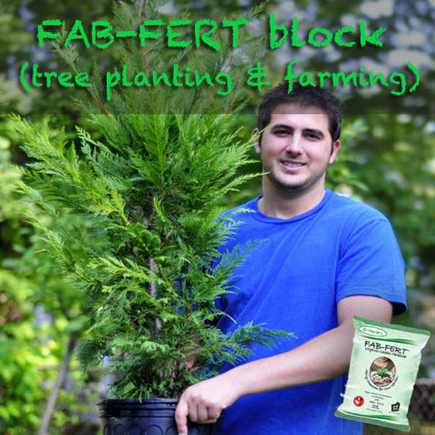 Fabfert Block (tree planting and farming)