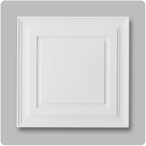 white ceiling tile - 2'x2' PVC panels