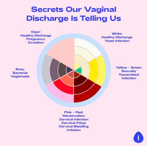 Vagina Facts The Oh Collective