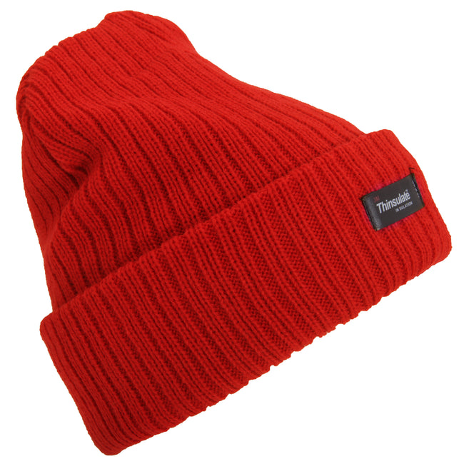 Purple - Front - Floso Womens-Ladies Rib Knit Thinsulate Winter Hat