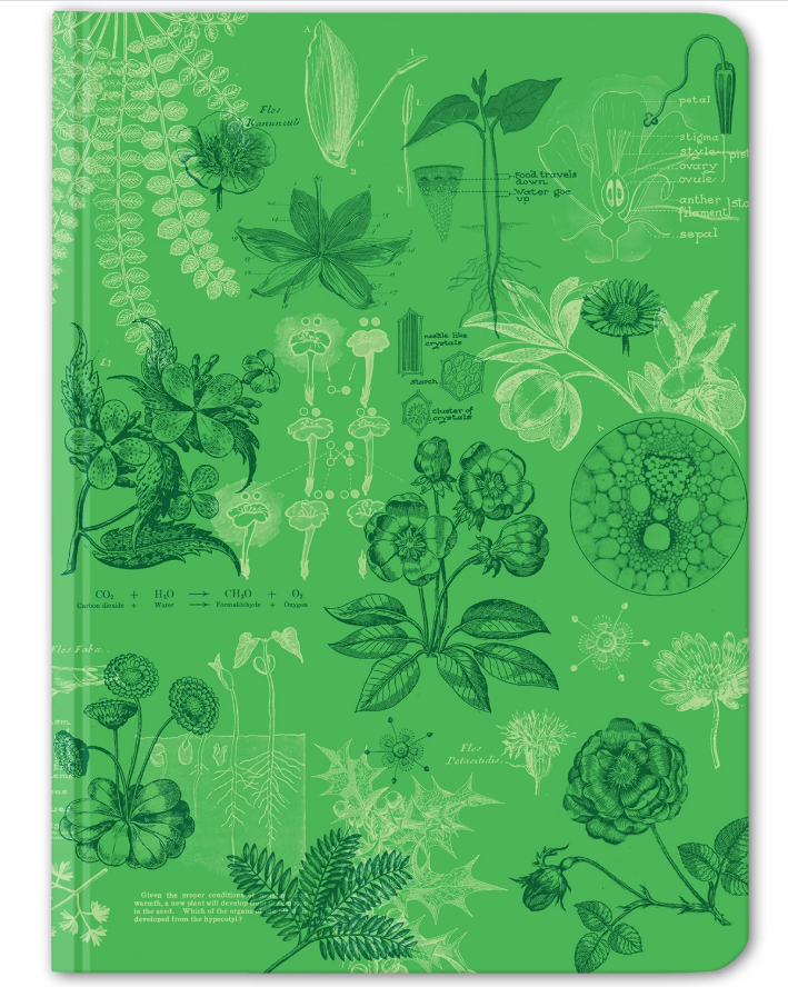 botany hardcover journal dot grid cognitive surplus pea pods roses petals bulbs photosynthesis cells leafy green cover botanist gardener student gardens novels experiments recycled 192 pages 5mm dot grid soy based ink writing stationary plants notebook journal gift botany
