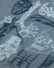 Load image into Gallery viewer, Human Anatomy Graphic Tee