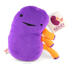 Load image into Gallery viewer, Kidney Plush