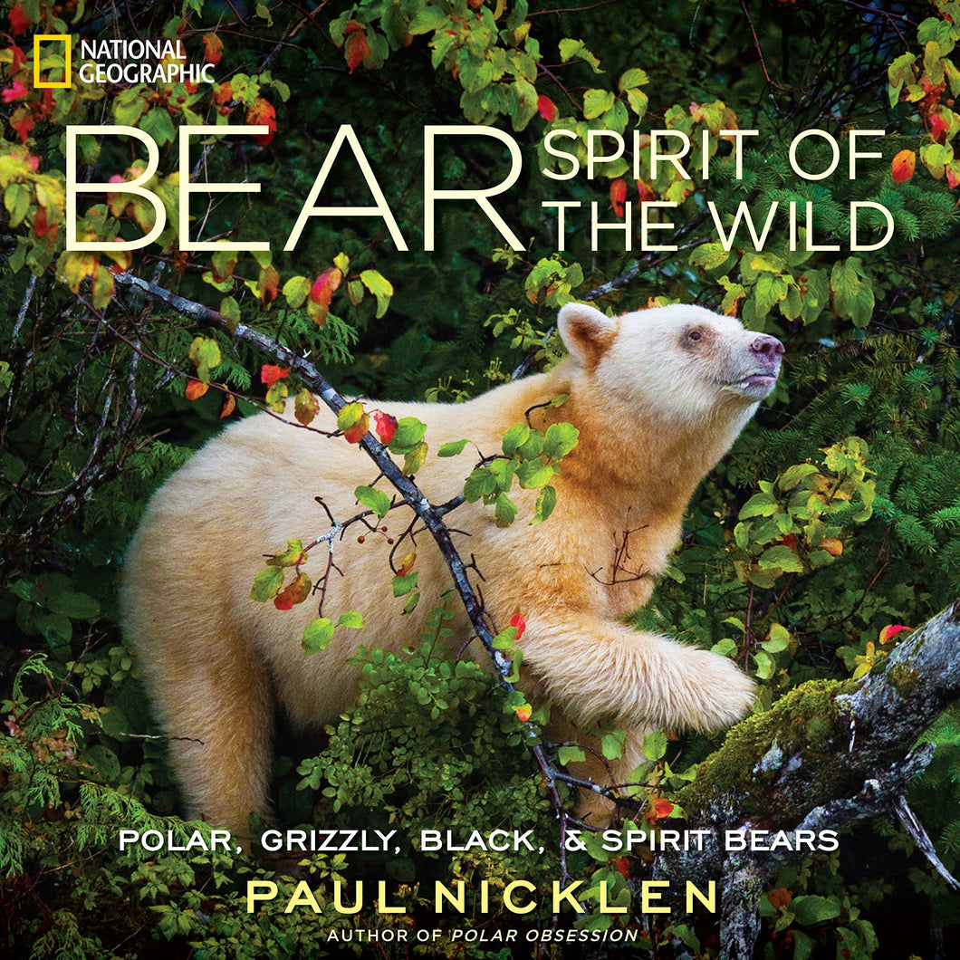 bear spirit of the wild polar grizzle black spirit bears paul nicklen national geographic penguin random house wildlife photojournalist photography collection storytelling landmark environmentalists magnificence powerful popular knowledge rainforest majestic