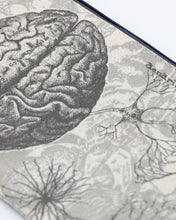 Load image into Gallery viewer, Brain Anatomy Zip Case