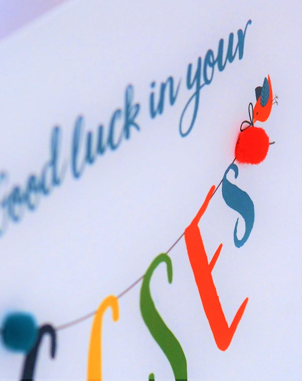 GCSE Exam Good Luck Card, Banner, Embellished with pompoms