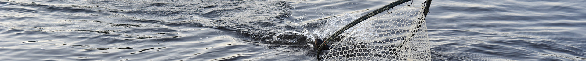 Guided Fly Fishing Page Banner