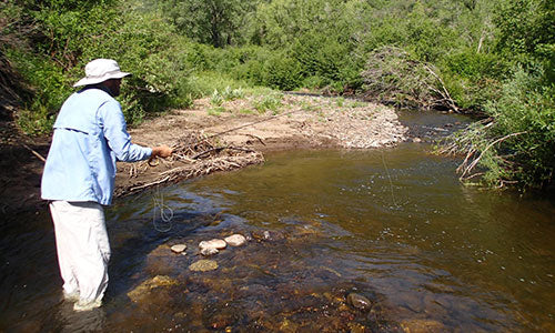 Private Fly Fishing Water Beaver Knott Ranch