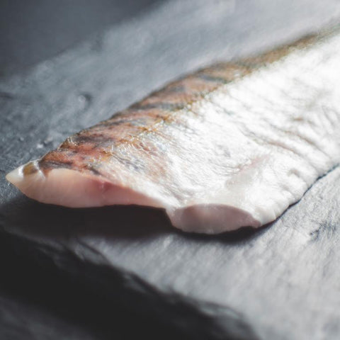 How to Defrost Salmon and Other Fish?