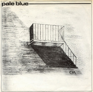 Pale Blue -  Ruin / Therapy 7""