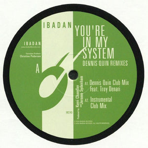 You're In My System: Dennis Quin Remixes