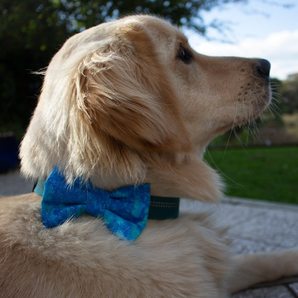Dog Bow Ties - Turquoise Glitter Clouds