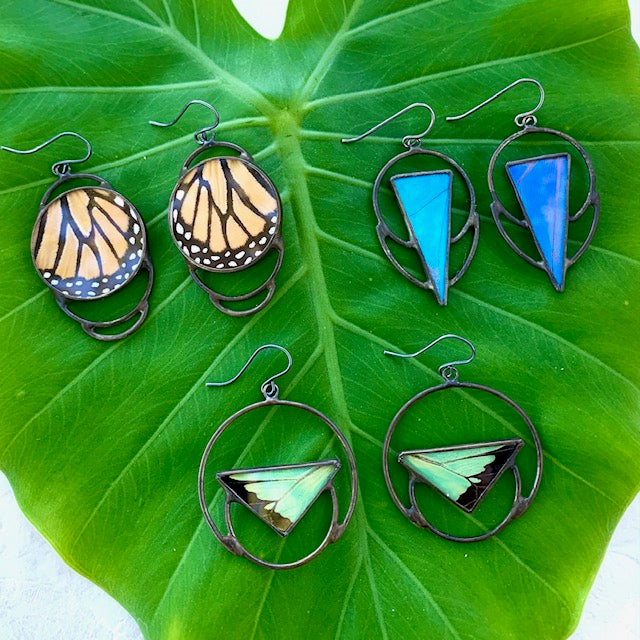 Butterfly & Insect Wing Jewelry