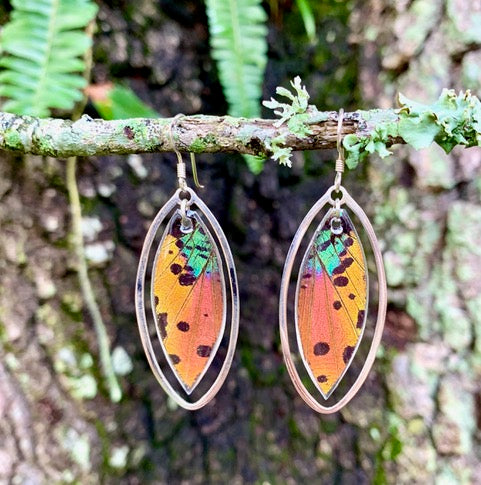 Colorful Sunset Moth Earrings