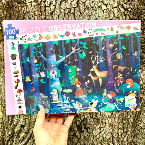 Enchanted Forest Observational Puzzle
